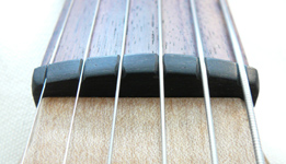 Bowable Fretless Baritone