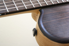 The Nylon String Baritone